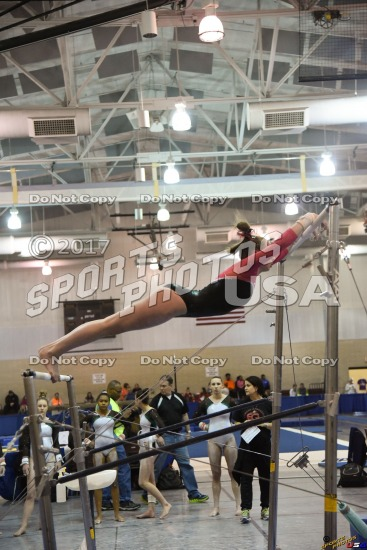 Sample Images from Gymnastics Meets